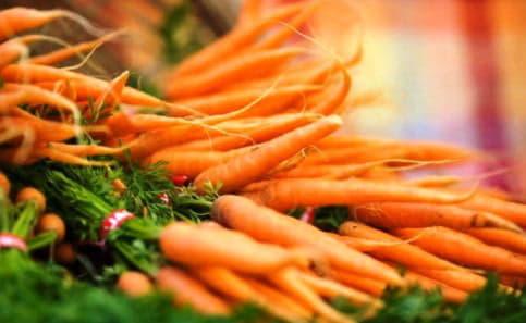 Морква - цілющі властивості