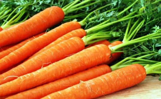 Морква, як лікарський засіб