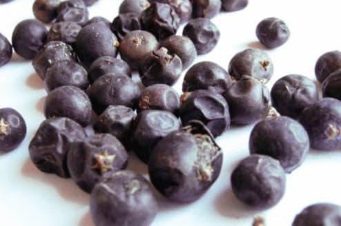 З лікувальною метою використовують зрілі чорні плоди