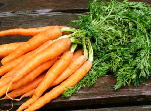 Морква є відмінним продуктом