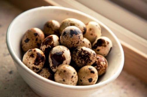 Здавна захворювання печінки лікували перепелиними яйцями