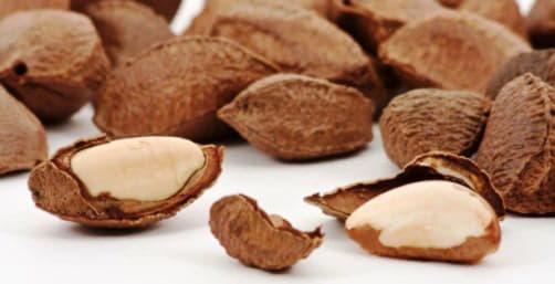 Бразильські горіхи: користь і шкода