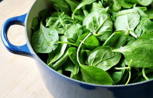 Цілющі властивості шпинату