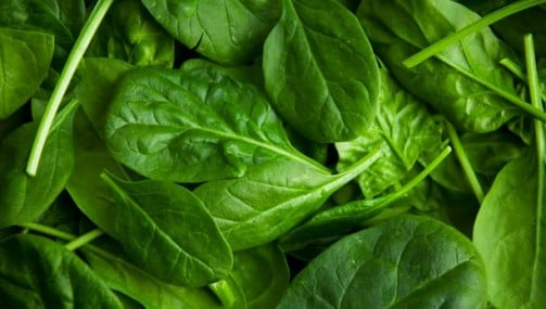 Чим може нашкодити шпинат