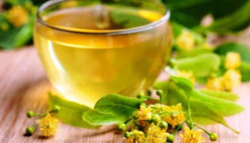 Липовий мед: користь і шкода