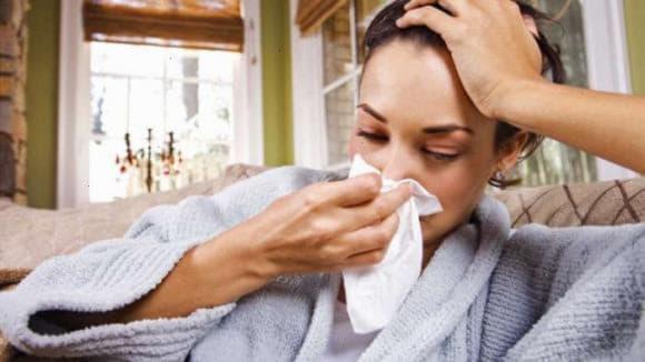 Цикламен від гаймориту - лікування краплями, настоями і маззю в домашніх умовах