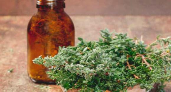 Ефірна олія чебрецю