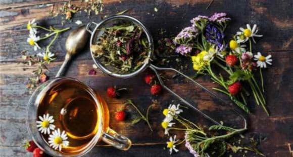 Монастирський чай проти паразитів